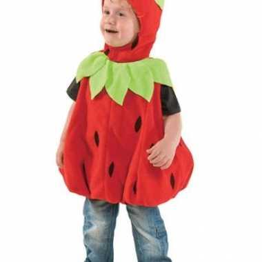 Pluche aardbeien peuter carnavalspak
